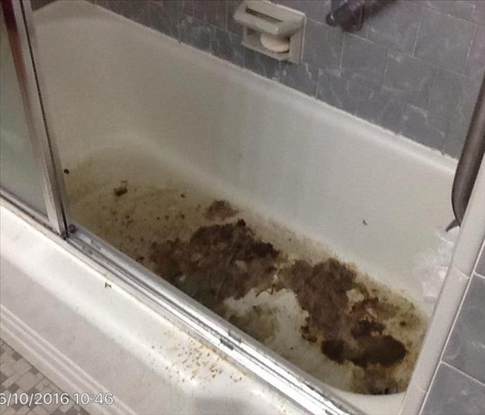 Dangers Of Sewage Backup In Building