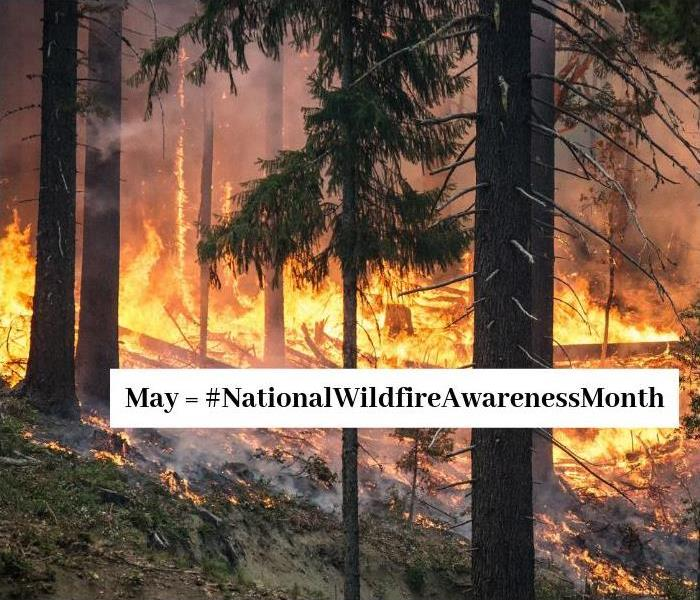 Fire Damage May is National Wildfire Awareness Month & 6 Facts