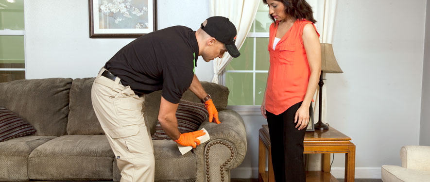 Attleboro, MA carpet upholstery cleaning